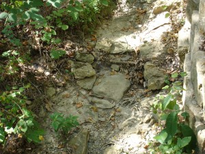 dried mud streambed